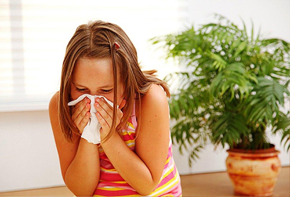лечение аллергии на домашних животных отзывы