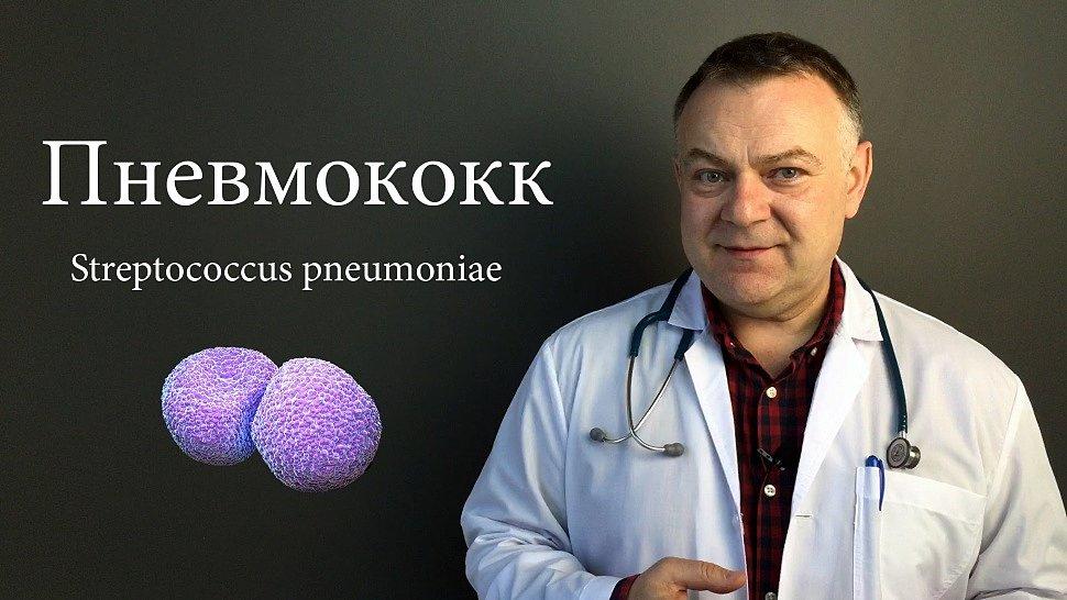 Инвазивная пневмококковая инфекция